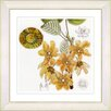 Studio Works Modern Vintage Botanical No. 23W by Zhee Singer Framed Giclee Print Fine Wall Art