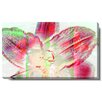 "Studio Works Modern ""Snow Flower"" Gallery Wrapped by Zhee Singer Painting Print on Canvas"
