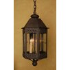 <strong>Laura Lee Designs</strong> Cardiff Hanging Lantern