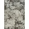 Kalora Intrigue Transitional Elements Rug