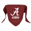 Doggie Nation NCAA Dog Bandana