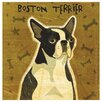 Boston Terrier Occasions Coasters Set (Set of 4)