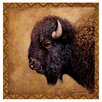 <strong>Thirstystone</strong> Bison Portrait Occasions Coasters Set (Set of 4)
