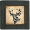 <strong>Thirstystone</strong> Lodge Deer Ambiance Coaster Set (Set of 4)