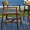 Djuro Dining Arm Chair