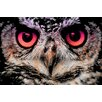 "Salty & Sweet ""Night Owl"" Graphic Art on Canvas"