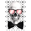Crush Collective Mr Bonehead Chic Graphic Art on Canvas