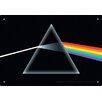 NMR Distribution Pink Floyd Dark Side Tin Sign Graphic Art