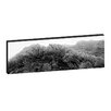 <strong>Artist Lane</strong> Andrew Brown Icy Cathedral Framed Canvas Print in Black/White