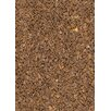 Chandra Rugs Art Brown/Tan Area Rug