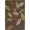 Chandra Rugs Aschera Brown Area Rug