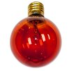 <strong>String Light Company</strong> Global Incandescent Light Bulb (Pack of 12)
