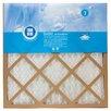 Protect Plus Air Filter (Set of 12)