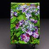 "Kim Rody Creations Mountain ""Lacecap Hydrangea"" Giclee Print on Gallery Wrapped Canvas"