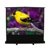 <strong>ez-Cinema Series MaxWhite Projection Screen</strong> by Elite Screens