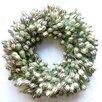 Dried Flowers and Wreaths LLC Nigella Wreath