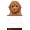 TFPublishing 2015 Puppies Wall Calendar