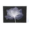 <strong>X-Ray Flower Printed Graphic Art on Canvas</strong> by Graham & Brown