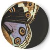 "Thomas Paul Metamorphosis 11"" Dinner Plate (Set of 4)"