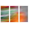 nexxt Design Shutter Myah Fireworks 3 Piece Graphic Art on Canvas Set