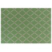 Rug Expressions Flat Weave Light Green Area Rug