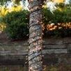 Kringle Traditions Mini Trunk Wrap Light