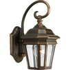 <strong>Progress Lighting</strong> Crawford Incandescent 1 Light Outdoor Wall Lantern