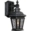 <strong>Progress Lighting</strong> Cranbrook 1 Light Outdoor Wall Lantern