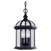 Savoy House Landry 3 Light Outdoor Hanging Lantern