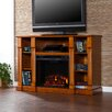 "<strong>Caswell 52"" TV Stand with Electric Fireplace</strong> by Wildon Home ®"