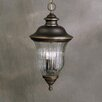 Sausalito 3 Light Outdoor Ceiling Pendant