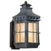 Troy Lighting Dover 1 Light Outdoor Wall Lantern