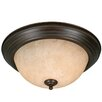 <strong>Golden Lighting</strong> Multi Family Flush Mount with Tea Stone Glass in Rubbed Bronze