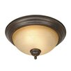 <strong>Golden Lighting</strong> Riverton 2 Lights Flush Mount