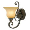 <strong>Golden Lighting</strong> Mayfair 1 Light Wall Sconce