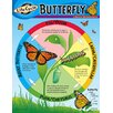 <strong>Chart Life Cycle Of A Butterfly</strong> by Trend Enterprises
