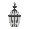 <strong>Livex Lighting</strong> Monterey 2 Light Outdoor Hanging Lantern