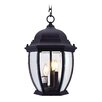<strong>Kingston 3 Light Outdoor Hanging Lantern</strong> by Livex Lighting