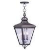 Livex Lighting Cambridge Outdoor Hanging Lantern