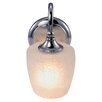 <strong>Yosemite Home Decor</strong> 1 Light Wall Sconce