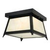 Vaxcel Prairieview 2 Light Outdoor Ceiling Sconce