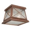 <strong>Mackinac Outdoor Ceiling Sconce</strong> by Vaxcel