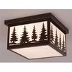 <strong>Vaxcel</strong> Yellowstone 2 Light Outdoor Flush Mount