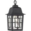 <strong>Banyon 1 Light Outdoor Hanging Lantern</strong> by Nuvo Lighting