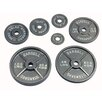USA Sports by Troy Barbell 25 lbs Olympic Plate in Gray