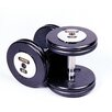 <strong>Troy Barbell</strong> 10 lbs Pro-Style Cast Dumbbells in Black