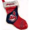 <strong>Team Beans</strong> MLB Holiday Stocking