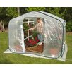 <strong>Flowerhouse</strong> Dreamhouse 6' x 8' Polyethylene Greenhouse