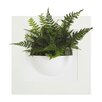 Exaco Green Gallery Single Planter