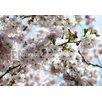<strong>Fototapete 'Spring' - 368 x 254 cm</strong> von Komar